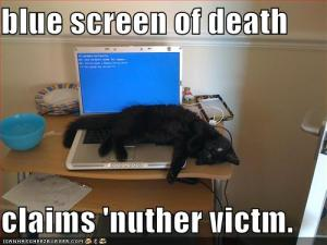 typical bsod situation, it's a technological black cat