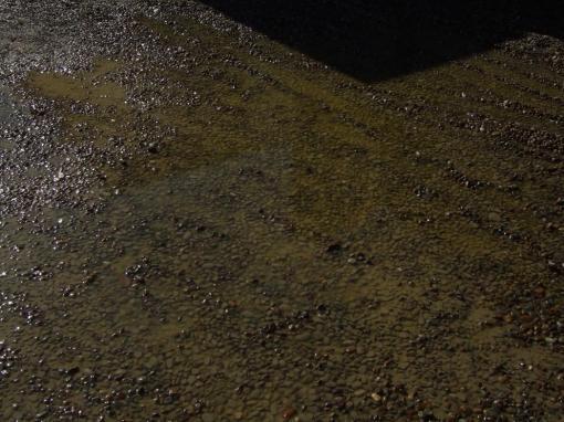 Iraqi rocks...with a puddle. Neat huh?